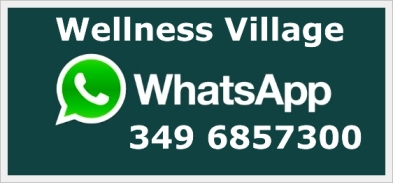 whatsappwellness2393x183